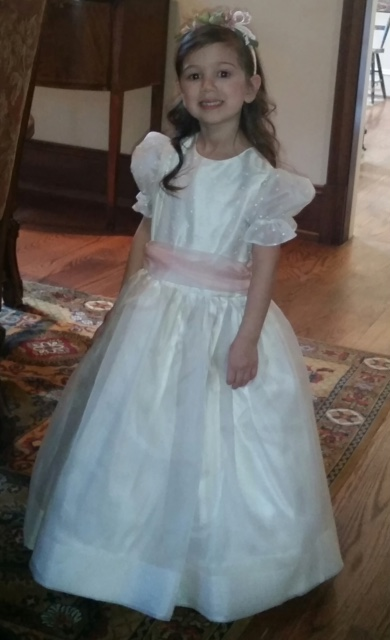 Flower Girl Dress #2